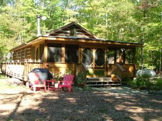 Door County Cabin in the Woods - Baileys Harbor vacation rentals