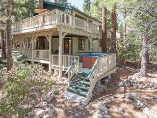 Forest Retreat Rental Cabin - Carnelian Bay vacation rentals