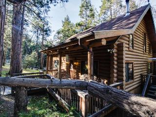Natural log cabin w/guest house & game room! - Idyllwild vacation rentals