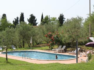 Pnoramic Apartment 4 persons in the Tuscan hills - Certaldo vacation rentals