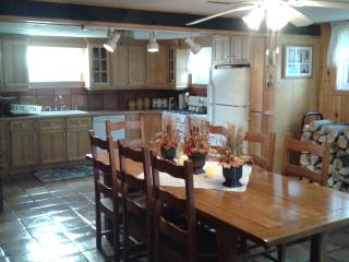 Nice House with Internet Access and A/C - Lincoln vacation rentals