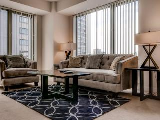 Furnished Luxury 1BR West End Apt. - Boston vacation rentals