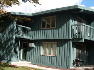 Shanty Creek Vacation Rental Condo (2 Queen Beds) ~ RA65242 - Bellaire vacation rentals