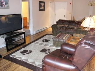 Nice Condo with Dishwasher and Elevator Access - Lincoln vacation rentals