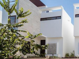 Luxurious Ocean Villa - Steps to Akumal Beach - Akumal vacation rentals