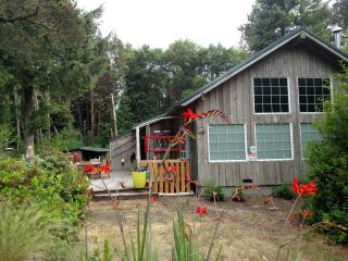 Nice Cabin Nestled in the Woods Close to the Beach - Grayland vacation rentals