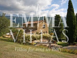Private 5 Bedroom Tuscan Villa on the Hills - Cortona vacation rentals
