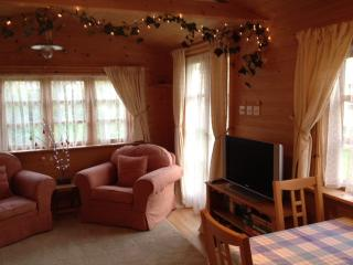 Nice Cabin with Internet Access and Television - Towcester vacation rentals