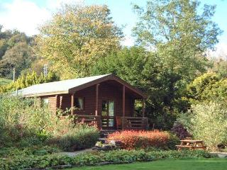 BUTTERMERE detached log cabin, shared grounds, close to Coniston in Greenodd - Greenodd vacation rentals