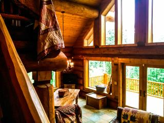 Large 3-floor Cabin outside Breck - Fairplay vacation rentals