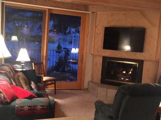 Walk to chairlift! Nice Views! Super Comfortable Two Bedroom - Copper Mountain vacation rentals