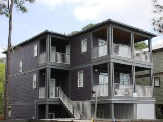 Lovely 4 bedroom House in Grayton Beach with A/C - Grayton Beach vacation rentals