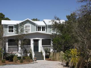 Perfect 3 bedroom House in Seagrove Beach - Seagrove Beach vacation rentals