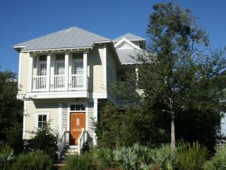 Perfect House with Internet Access and Private Outdoor Pool - Watercolor vacation rentals