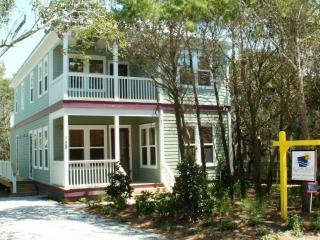 Lovely 4 bedroom Seagrove Beach House with Deck - Seagrove Beach vacation rentals
