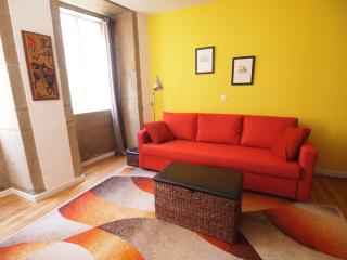 Historic Center, Spacious Apartment - Santiago de Compostela vacation rentals