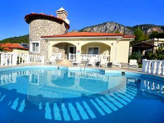 Nice Villa with A/C and Television - Dalaman vacation rentals