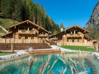 Nice Chalet with Internet Access and Central Heating - Grossarl vacation rentals