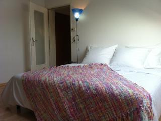 Appartement au cente-ville de Kehl - Kehl vacation rentals
