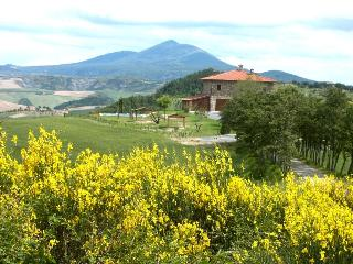 Nice House with Parking Space and Shared Outdoor Pool - Trevinano vacation rentals