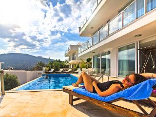 Perfect Villa with Internet Access and Dishwasher - Kalkan vacation rentals