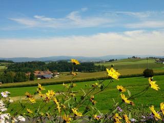 Ferienwohnung im bayerischen Wald - Tittling vacation rentals