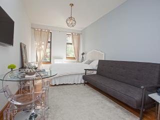 455-4B Amazing Studio at Times Square Midtown West - New York City vacation rentals