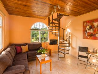 Canyon view apartment in a private gated community - Ciudad Colon vacation rentals