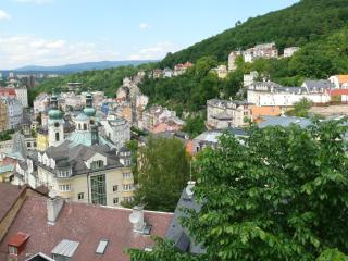 VIEW OF THE CITY NEVER TO BE FORGOTTEN    For 4 p. - Karlovy Vary vacation rentals