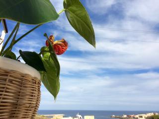 Villa Beatrice Monolocale A1 - Pantelleria vacation rentals