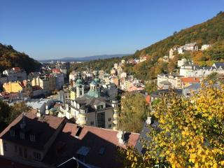 VIEW LIKE FROM EAGLES NEST   For 3 people - Karlovy Vary vacation rentals