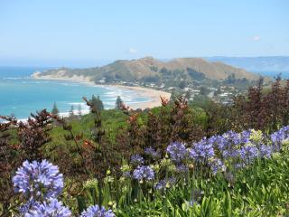Charming House with Deck and Internet Access - Gisborne vacation rentals