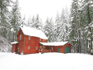 Cozy Cabin with Deck and Internet Access - Packwood vacation rentals