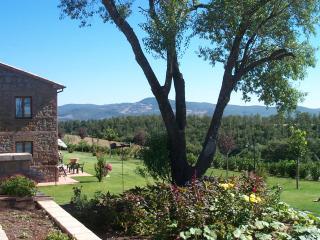 Agriturismo Brizi - Ap Castagno - - Trevinano vacation rentals
