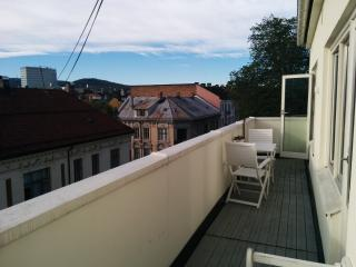 Modern, cool and central Penthouse with balcony - Oslo vacation rentals