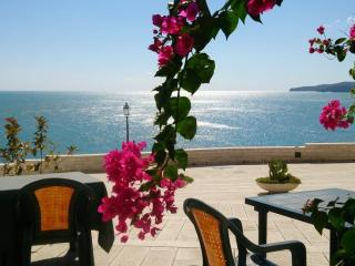 Also in Winter! IL NIDO AZZURRO: Your Romantic Blue Nest In Vieste - Vieste vacation rentals