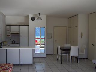 Nice Condo with Internet Access and Washing Machine - Lugano vacation rentals