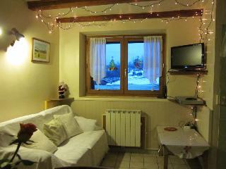Spacieux et confortable appartement 3 pièces dans maison - Villard-de-Lans vacation rentals