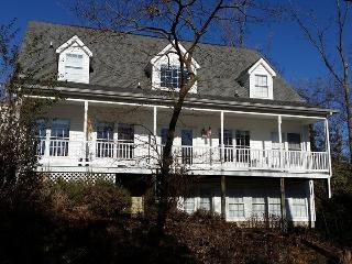 DREAM FAMILY HOUSE ON THE POTOMAC RIVER - Montross vacation rentals