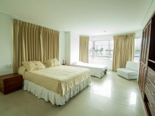 Nice House with Internet Access and Satellite Or Cable TV - Cartagena vacation rentals