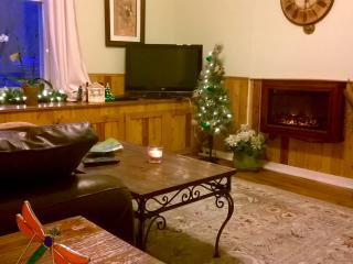 Quite winter nights along the Arkansas River - Canon City vacation rentals