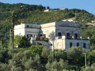 Casa Rivo, scent of lemon groves - Massa Lubrense vacation rentals