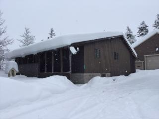 Easy Winter Access to main snowmobile trails - Island Park vacation rentals