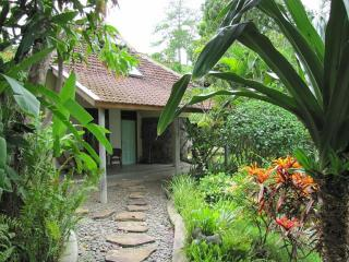 Sananda Bungalows a place for enjoy and relax - Lovina vacation rentals