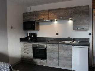 Appartement résidence Le Lauvitel 33m2 + garage au pied du télésiège du Diable - Les Deux-Alpes vacation rentals