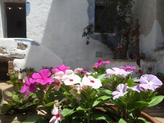 Relax e silenzio a Corte San Lussorio - Oliena vacation rentals