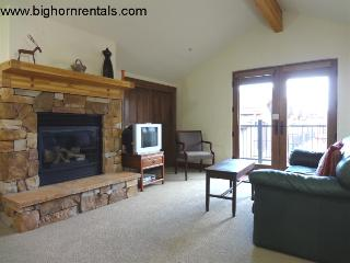 Beautiful 3 bedroom House in Frisco - Frisco vacation rentals