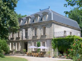 Charming B&B in a château CarcassonneToulouseAlbi - Blan vacation rentals