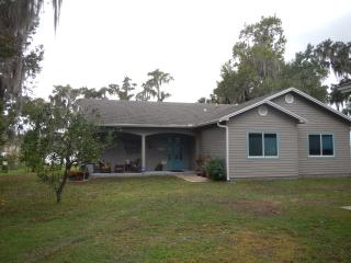 Nice House with Deck and Internet Access - Georgetown vacation rentals