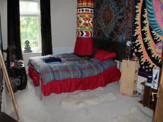 Bradford Digs with a funky cosy double bedroom - Bradford vacation rentals